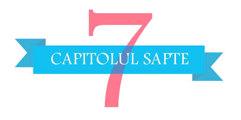 Capitolul 7 - Raspunderea contraventionala